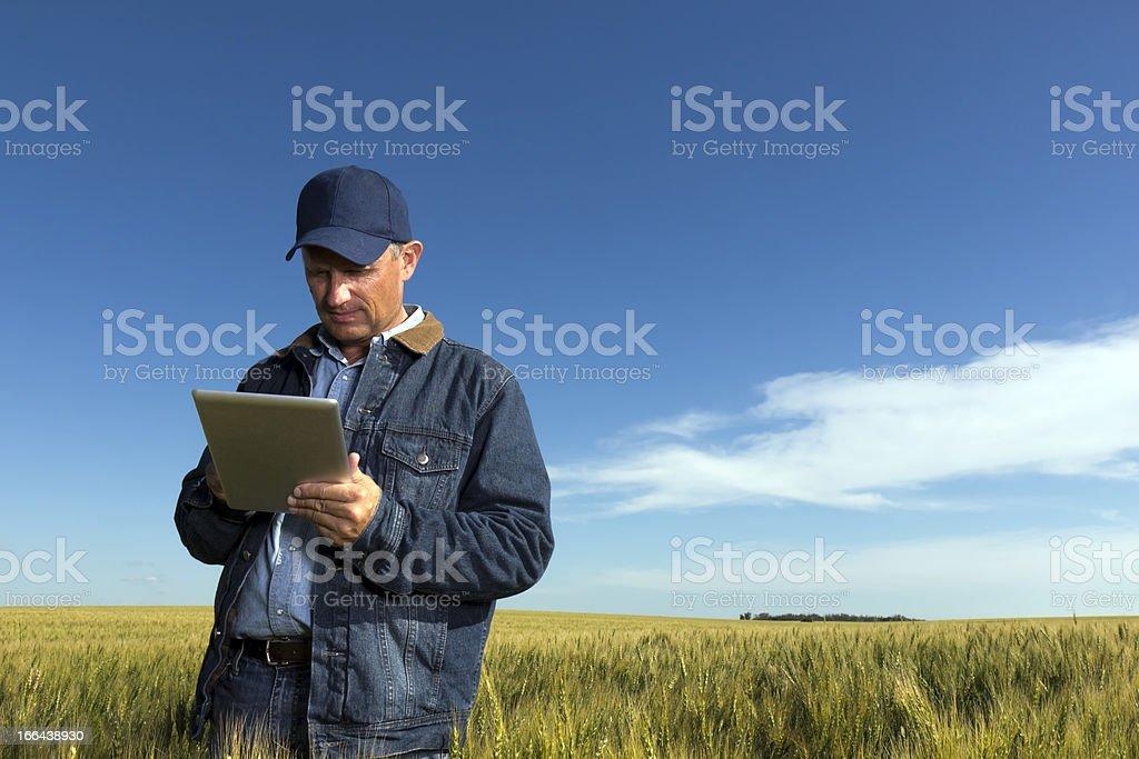Farmer y tableta - foto de stock