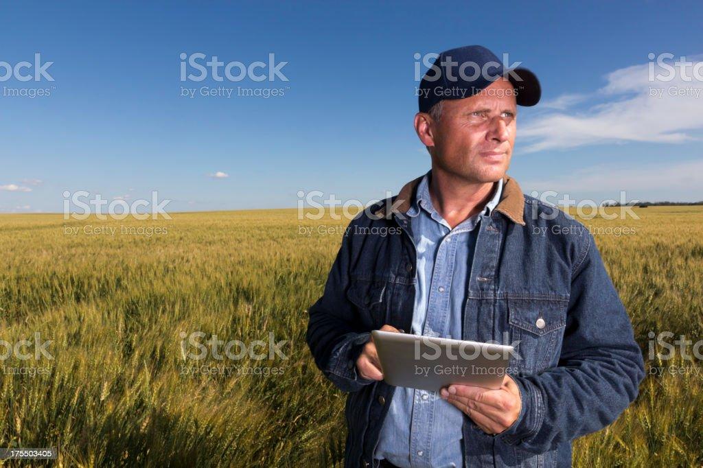 Agricultor y comprimido - foto de stock