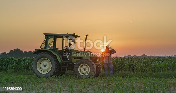 Rear view of a farmer standing near a tractor in a corn field under a moody sky at sunset