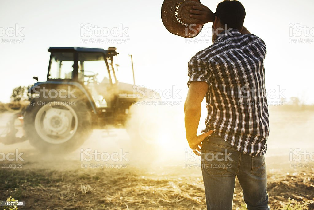Farmer and tractor working in the fields. stock photo