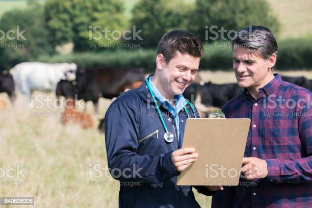 Farmer and vet in field with cattle looking at clipboard picture id840826006?b=1&k=6&m=840826006&s=612x612&h=jnrtpzzcbfmkavbouqwxxzeyowus88q9tfhorefm9ja=