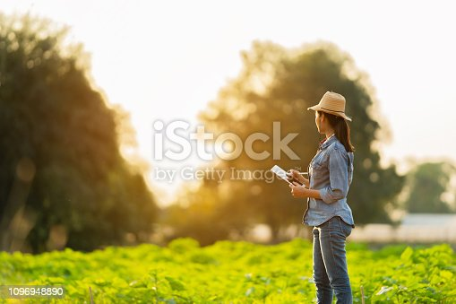 istock Farmer are planning to farm on tablets. 1096948890