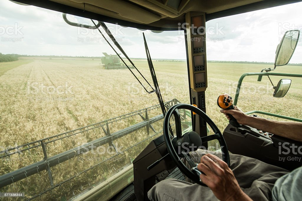 Farmer at steering wheel of сombine harvester on wheat field stock photo
