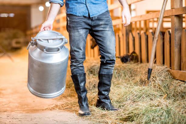 farmer at the barn - allevatore foto e immagini stock