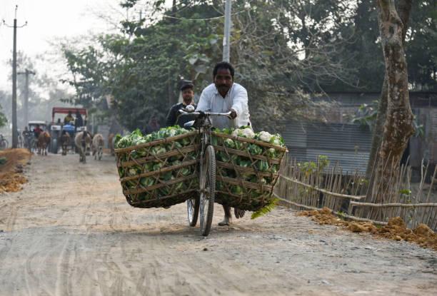 Ein Landwirt trägt Blumenkohl auf einem Fahrrad zu verkaufen – Foto