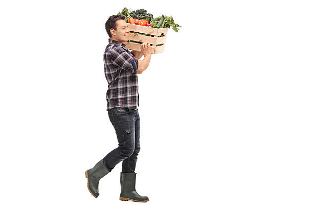 Farmer carrying a crate with vegetables stock photo