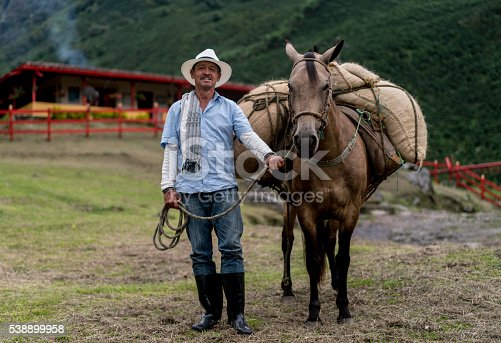 Colombian farmer carrying coffee crop in sacks on a horse - agriculture concepts