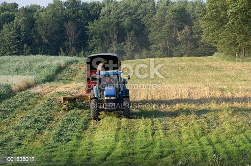 A blue farm tractor with a full load of hay silage in a summer farm field.