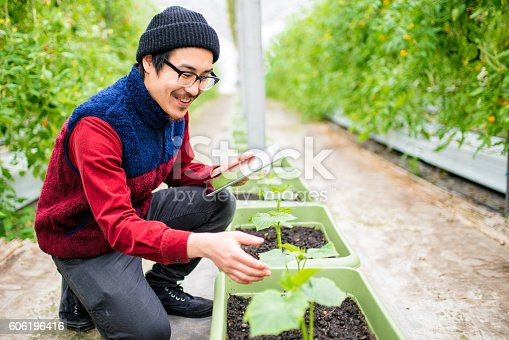 istock Farmer conducting research using a digital tablet in a greenhouse 606196416