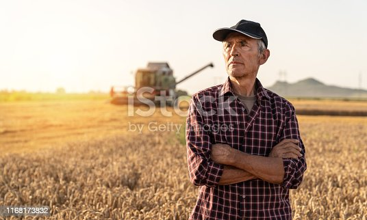 Farmer controlled harvest in his field stock photo