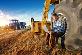 istock Farmer counts yields on a computer 143917299