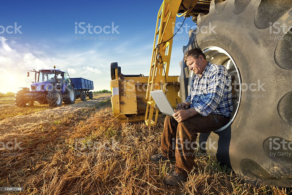 Farmer counts yields on a computer stock photo
