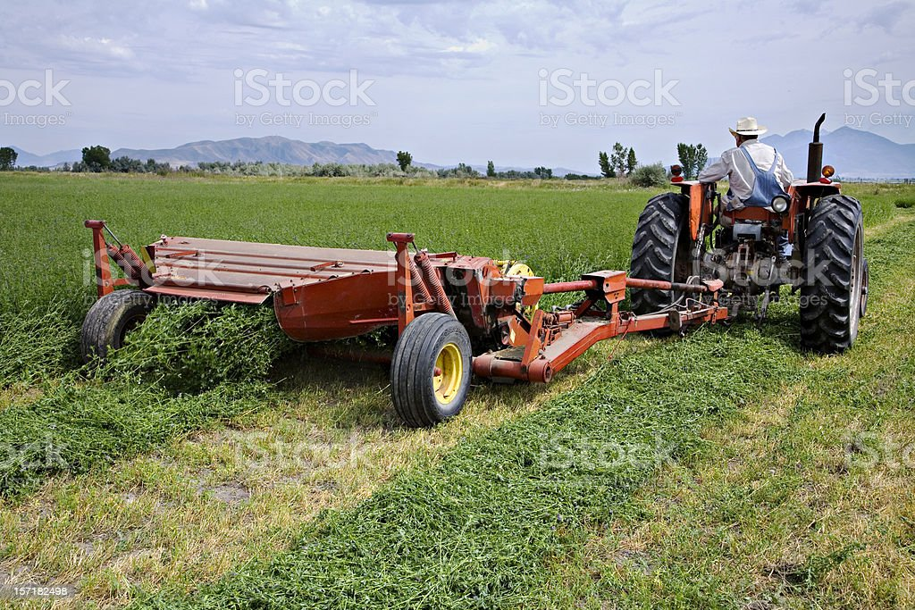 Farmer Cutting the Hay Crop. royalty-free stock photo