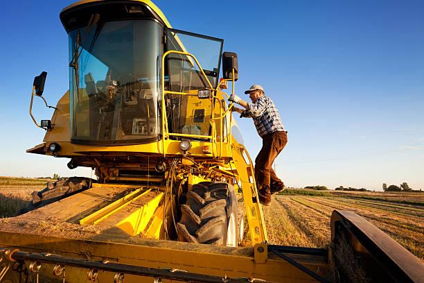 Farmer enters the combine harvester stock photo