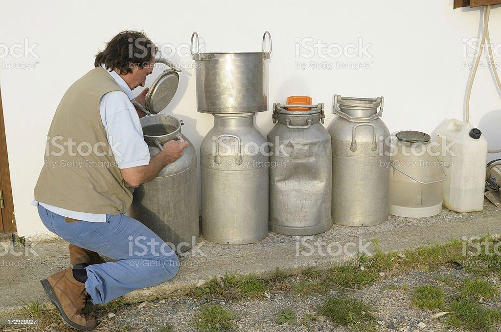 Farmer examining  milk royalty-free stock photo