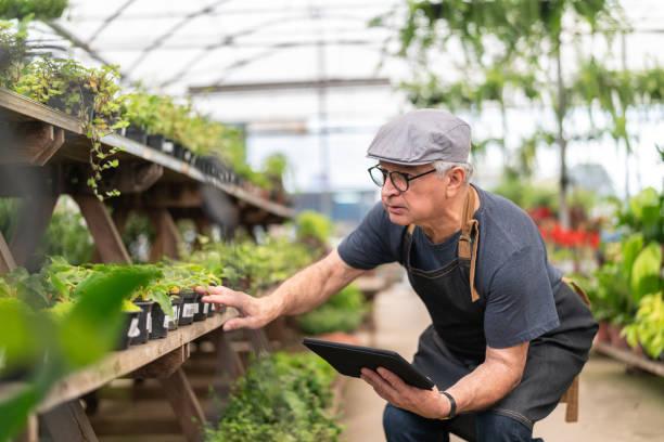 agricoltore che esamina le piante utilizzando tablet digitale - mercato luogo per il commercio foto e immagini stock