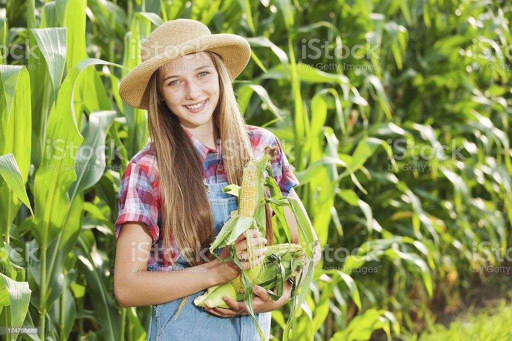 Farmer Girl Holding Freshly Harvested Corn by the Field Hz stock photo