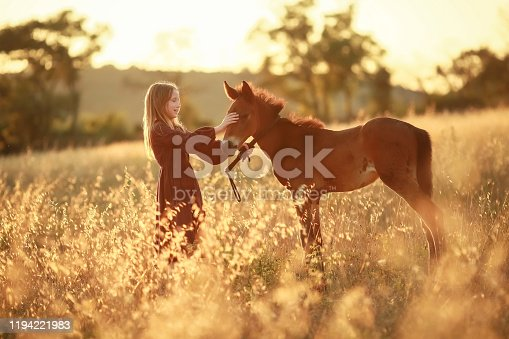 1128475475 istock photo A farmer girl walks a horse in a yellow meadow 1194221983