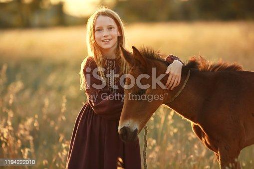 A farmer girl walks a horse in a yellow meadow.