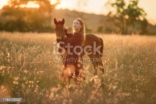 1128475475 istock photo A farmer girl walks a horse in a yellow meadow 1194222037