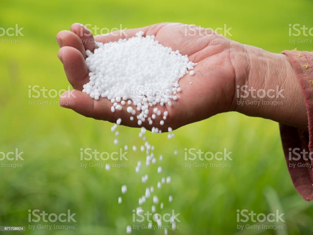 Farmer hand hold plant chemical fertilizer stock photo