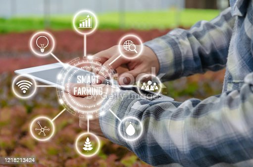 1047941544 istock photo farmer hands using mobile tablet computer analysis data development with visual icon in hydroponic greenhouse garden nursery farm, smart farming, digital technology and agricultural innovation concept 1218213424