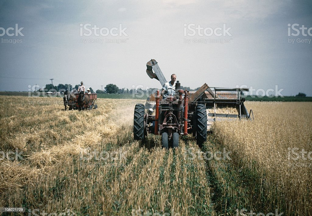 farmer harvesting oats in field 1948, retro stock photo