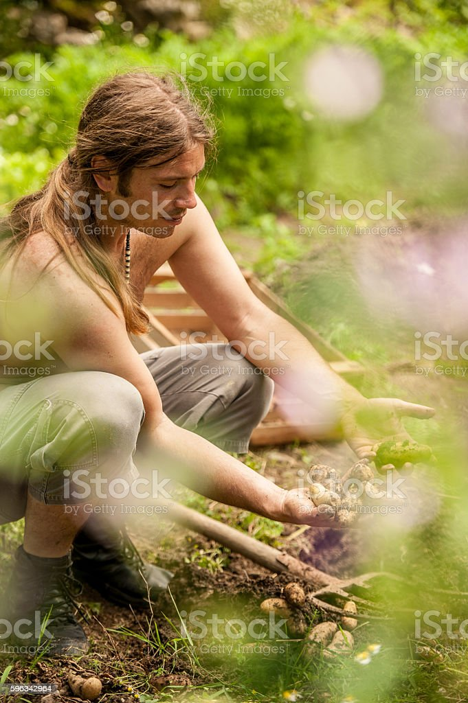 Farmer Harvesting the Crop royalty-free stock photo