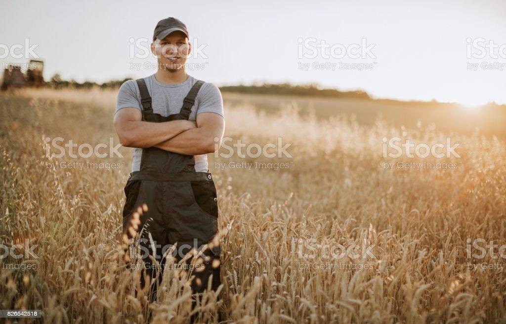 Farmer has care of his wheat field stock photo