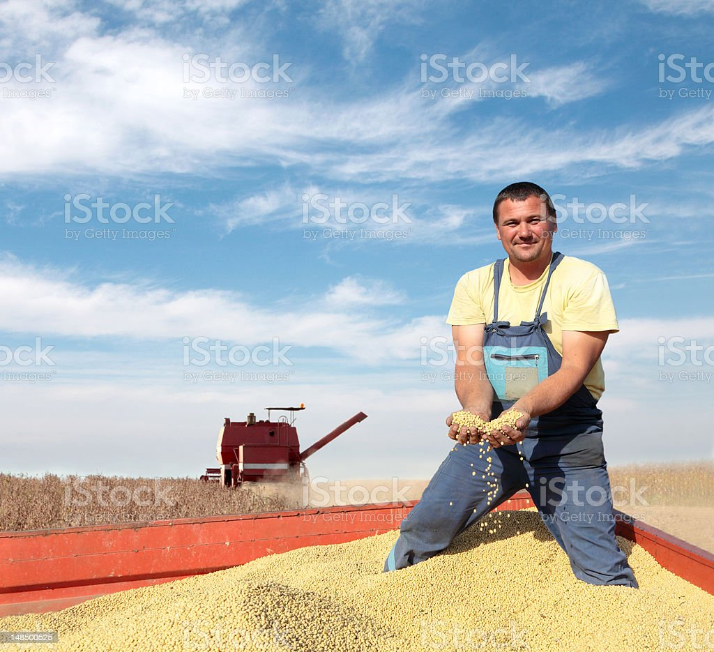 A farmer holding a sample of the farm's produce royalty-free stock photo