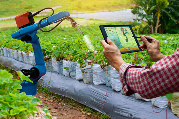 Farmer holding a tablet smart arm robot work agricultural machinery technology stock photo
