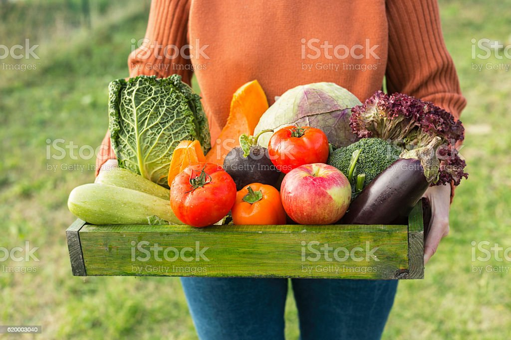 farmer holding box with fresh organic vegetables stock photo