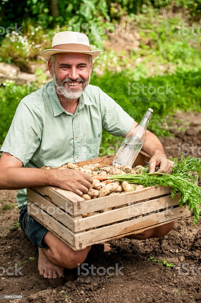 Farmer Holding Crate Full of Vegetable Lizenzfreies stock-foto