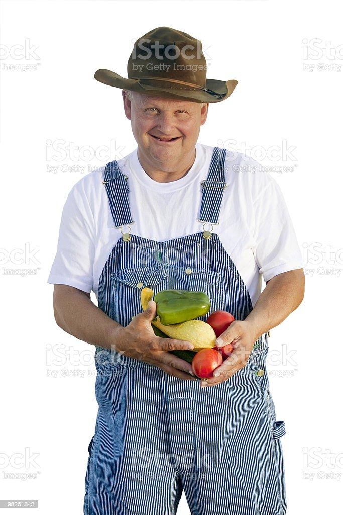 Farmer holding Organic Vegetables royalty-free stock photo