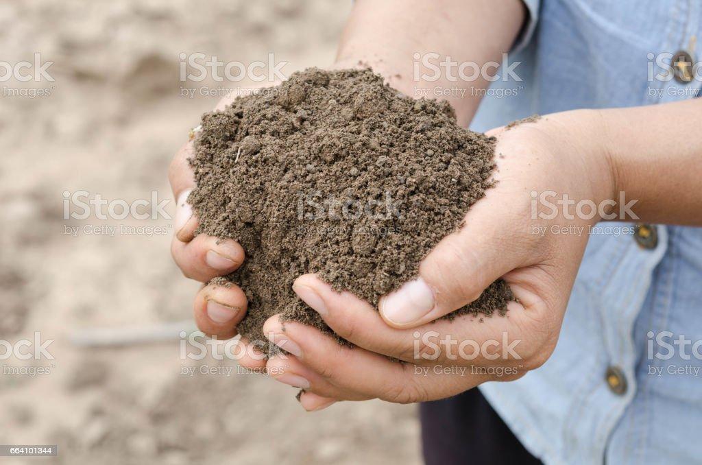 Farmer holding pile of arable soil female agronomist examining quality of fertile agricultural land stock photo