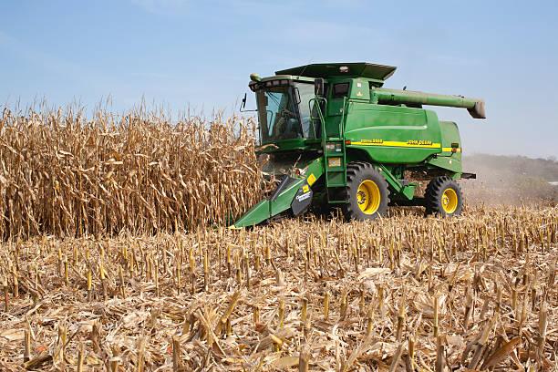 Farmer in a John Deere combine harvesting corn stock photo