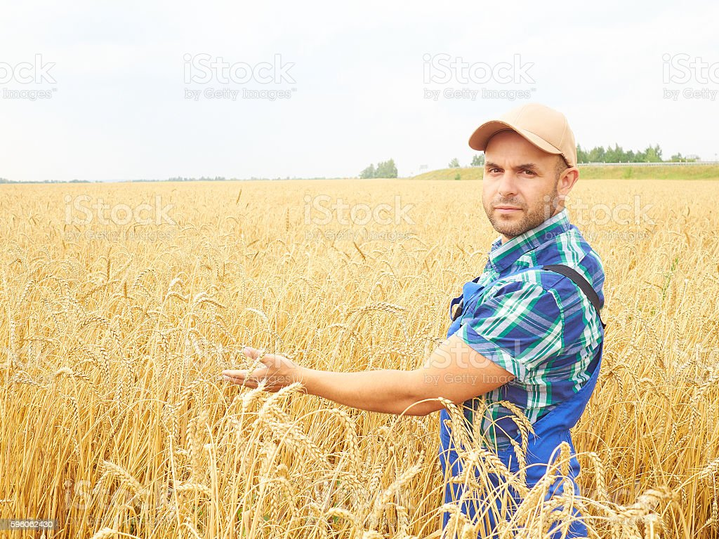 Farmer in a plaid shirt controlled his field.. royalty-free stock photo