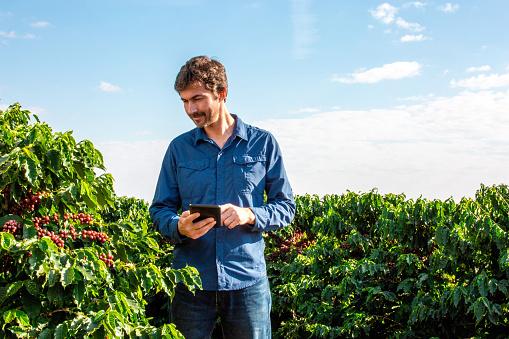 Farmer in coffee plantation