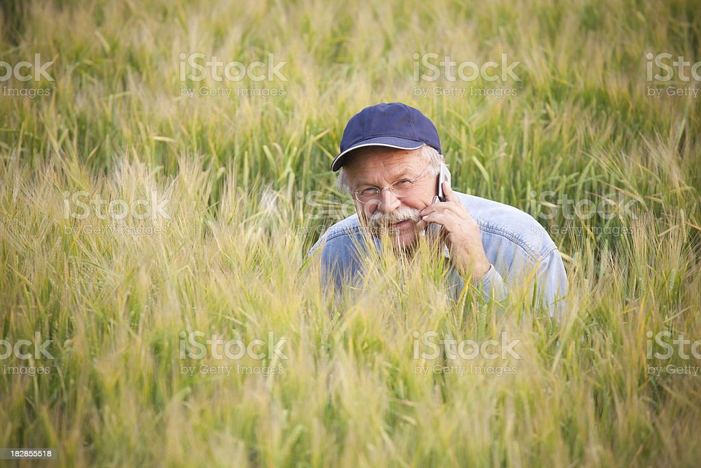 Farmer In crop royalty-free stock photo