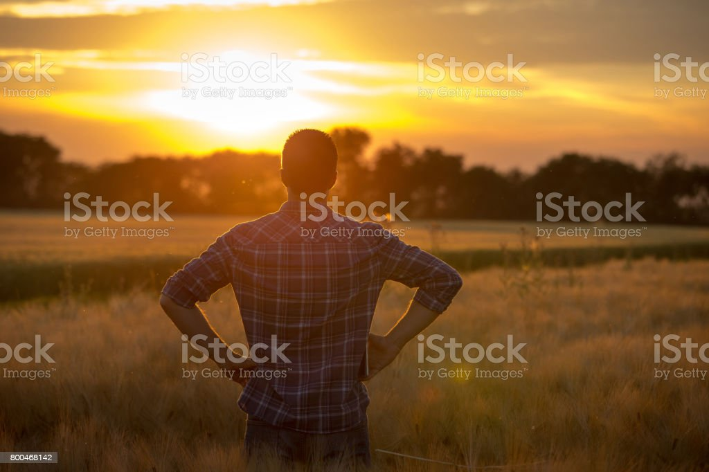 Farmer in field stock photo