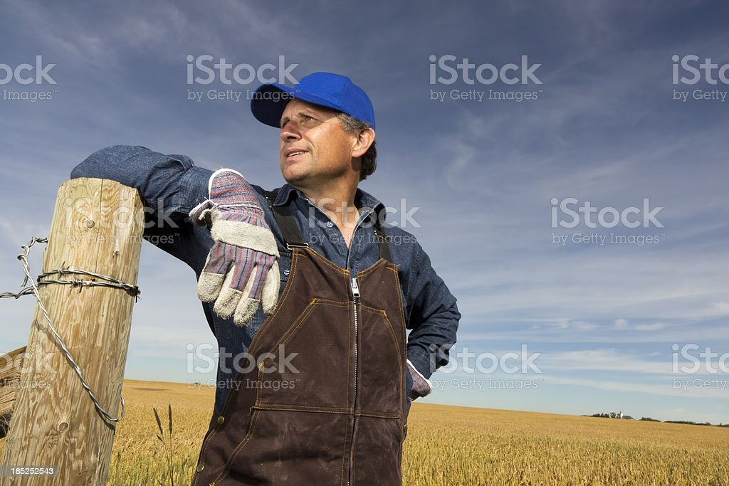 Farmer in his Field royalty-free stock photo
