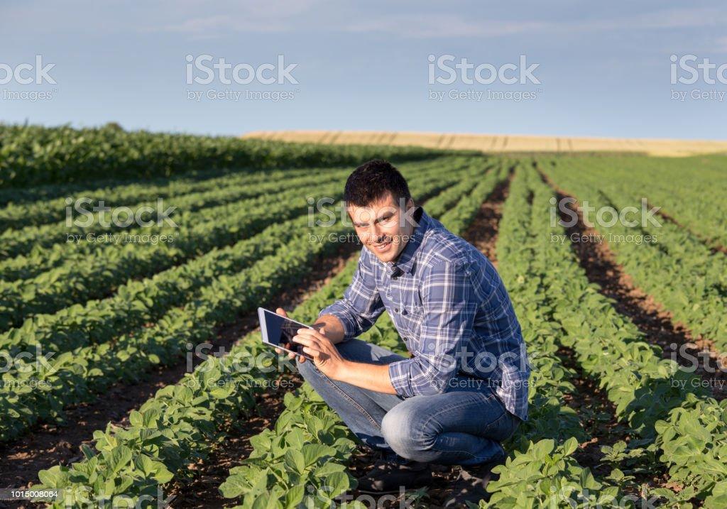 Landwirt in Soja-Feld – Foto