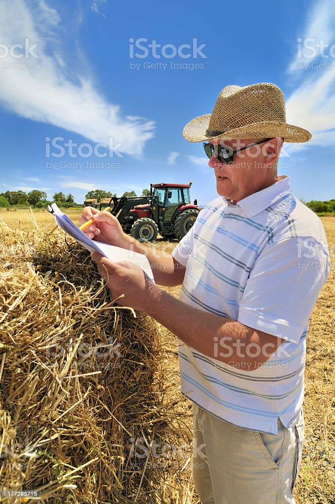Farmer in straw hat in field, document in hand royalty-free stock photo