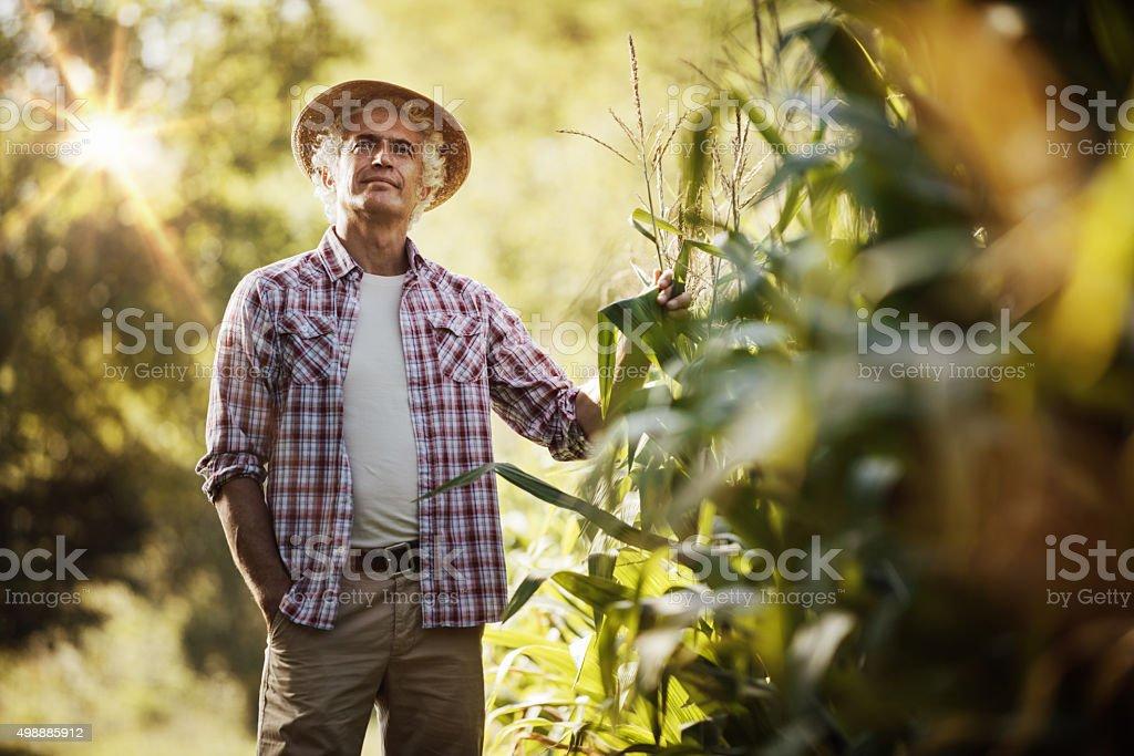 Agricultor no campo - foto de acervo