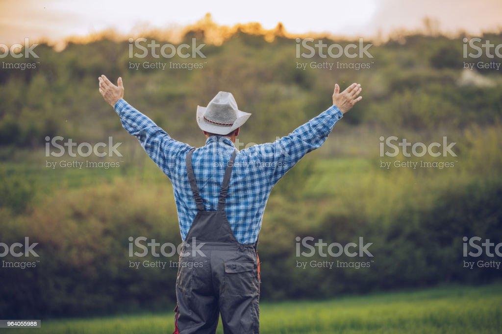 農夫が自分の土地を愛する - 1人のロイヤリティフリーストックフォト