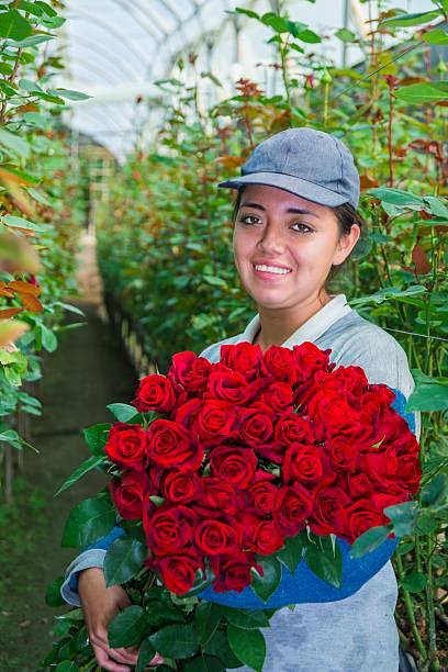 Farmer on greenhouse picture id636765696?b=1&k=6&m=636765696&s=612x612&w=0&h=aki4c q5sm hh eho3kudicxncvrxaezbf7xtdw 39m=