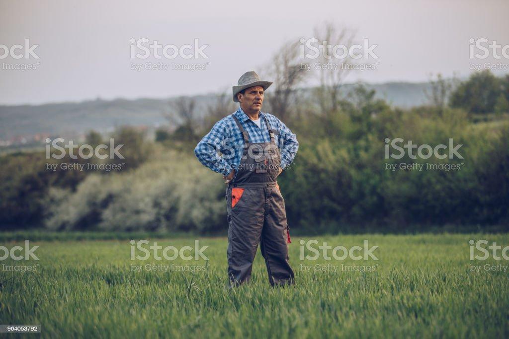 Farmer on his beautiful land - Royalty-free Active Seniors Stock Photo