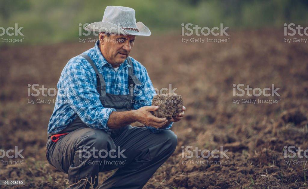 Farmer on his land - Royalty-free Active Seniors Stock Photo