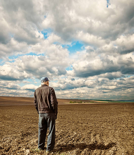 farmer on spring field stock photo