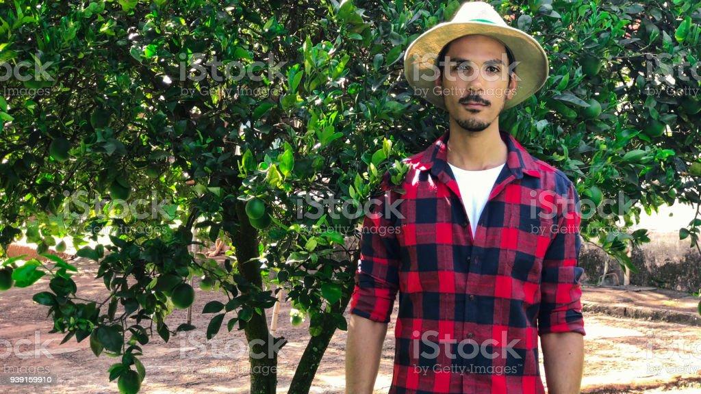 Agricultor o trabajador con el sombrero en busca de cámara frente a Naranjo. - foto de stock